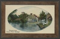 Postcard Ringwood New Forest Hampshire early view from First Bridge by Gardner
