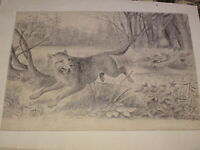 Ecole FRANCAISE XIX DESSIN CHASSE au LOUP CHASSEUR CHIEn WOLF HUNTING 1850