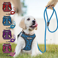 Pet Control Harness for Dog Cat & Lead Set Reflective Soft Mesh Vest Purple Pink