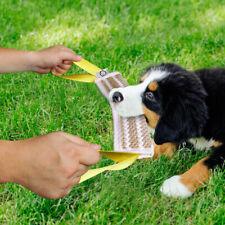 Jute Dog Bite Tug Aggressive Chew Toys for Pet Indestructible Training Builder