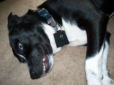 Dog Tag Silencer, Tag Covers, Pet Collar ID Tag, One Size Fits All!_ CUTE!!!