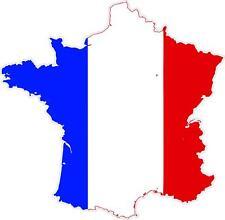 Pegatina sticker Adesivi adhesivo vinilo coche moto bandera mapa francia