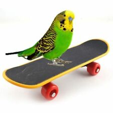 Mini training Skateboard for Parrot Budgie Cockatiels Agapornis Conure Funny Toy