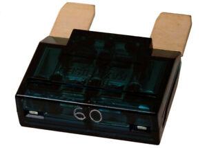 Fuse ACDelco Pro MAX60-5