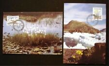 Greenland Maximum Card 1989.10.12. Flowers I - EXCELLENT