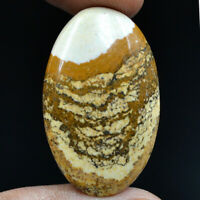 Cts. 27.95 Natural Landscape Picture Jasper Oval Cabochon Cab Loose Gemstone