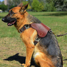 Genuine Leather Large Dogs Harness Vest for Pitbull Rottweiler Labrador & D-ring