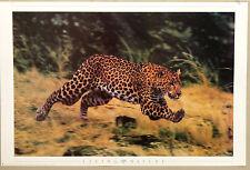(PRL) 1998 LEOPARDO LIVING NATURE VINTAGE AFFICHE PRINT ART POSTER COLLECTION