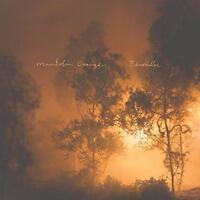 Mandolin Orange - Blindfaller (NEW CD)