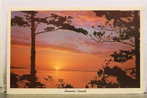 Scenic Summer Sunset Postcard Old Vintage Card View Standard Souvenir Postal PC