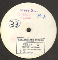 Kelly-G Perfect Rhythm - Trip To The Future - 19991 PERCEPTION UK - Holler 1