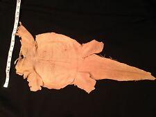 TANNED  Lizard snakeskin hide genuine leather skin 9in.x15IN AVERAGE LOT OF 6