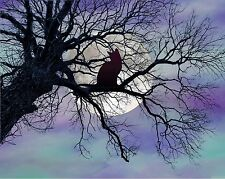 Teal Purple Black Cat in Tree Full Moon Home Decor Photo Print Picture Matted