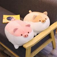40CM Kawaii Fat Shiba Inu Plush Stuffed Pig Toy Soft Cartoon Piggy Doll Pillow