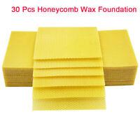 Apis Cerana Nest Foundation Bee Honeycomb Comb 30ps//bag