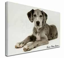 More details for great dane 'love you mum' x-large 30