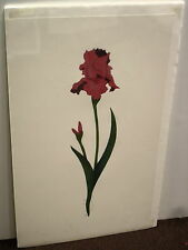 VINTAGE IRIS IV HARRY HEUIRE WATERCOLOR BOTANTICAL ART PRINT  S/N