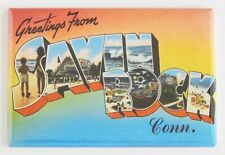 Greetings from Savin Rock Connecticut Fridge Magnet travel souvenir
