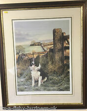 Steven Townsend ltd Edition Up North Collie Dog