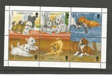 Gibraltar  1996  Dogs Shih Tzu Dalmation Spaniel Terrier Labrador Boxer  MNH  MS