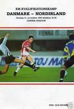 1991 - DENMARK v NORTHERN IRELAND