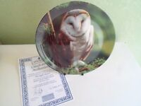 Delightful Colourful Owl Plate THE NIGHT HUNTER by Michael Leach - Bird Interest