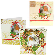 Pack of 10 Christmas Cards with Foil Detail - Robin Design
