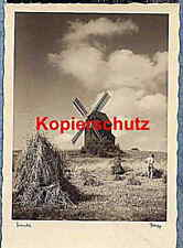 AK - Foto - Mühle - Heu - Kinder - alt