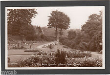 Postcard Glossop Derbyshire the Rose Gardens in Manor Park RP by Robinson