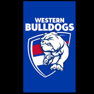 NEW Official Western Bulldogs Supporter Flag (150cm x 90cm)