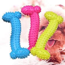 Bone Shape Pet Dog Puppy Molar Thorn Chew Toy for Teeth Training Latest Hot