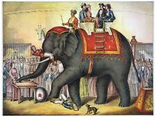 "11x14""Decoration poster.Interior design.Room art.Elephant Circus act show.7104"