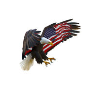 Bald Eagle USA American Flag Sticker Truck Car Laptop Window Decal Bumper Cool