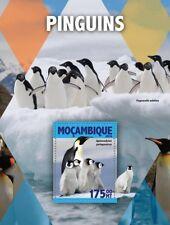 Mozambique 2016 MNH Penguins King Penguin 1v S/S Birds Stamps
