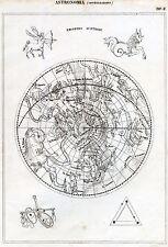 Astronomia: Astrologia: Costellazioni: Emisfero Australe. Incisione su Rame.1866