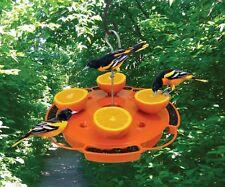 Songbird Essentials ULTIMATE ORIOLE FEEDER, SE905, Feed Nectar Jelly Oranges, dm