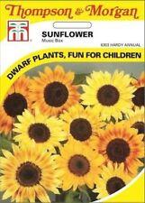 Blumenzwiebeln, Knollen & Rhizome