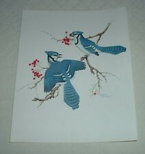"1978 BLUE JAYS BIRDS Songbird Sherm Pehrson Color Print 8 x 10"""