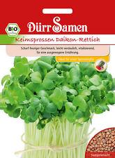 4086 Dürr BIO Keimsprossen Daikon Rettich ca.80g Scharf feuriger Geschmack