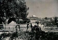 CIUDAD RODRIGO c. 1950 - Un Puits Espagne - M21