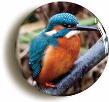 KINGFISHER BIRD WATCHING BADGE BUTTON PIN (Size is 1inch/25mm diameter)