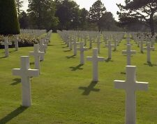 American military cemetery overlooking Omaha Beach France D-Day - New 8x10 Photo