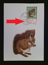 SCHWEIZ MK 1966 846 TIERE EICHHÖRNCHEN SQUIRREL CARTE MAXIMUM CARD MC CM c8373