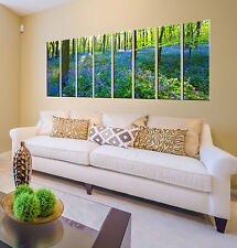Canvas Art Prints - Forest Decor - Photo Canvas Wall Art - Framed Pictures