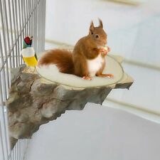 Pet Platform Wood Perch Parrot Hamster Squirrel Bird Cage Play Stand Toys lrd
