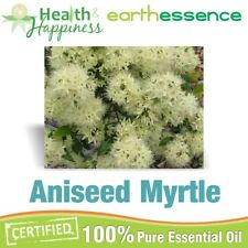 ANISEED MYRTLE ~ earthessence Certified 100% Pure Essential Oil ~ Aromatherapy
