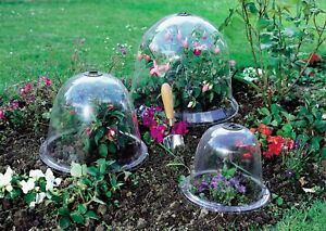 Victorian Bell Cloche Frost Protection For Plant Veg Garden Multi Size