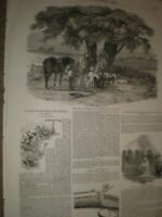 The First of September The Luncheon by Duncan & The Safety Gun 1850 prints