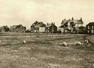 """THE RYPE, LYDD, KENT 7X5"""" PRINT"""