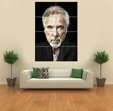 TOM JONES LEGEND SINGER WALES COOL GIANT WALL ART PRINT PICTURE NEW POSTER G1206